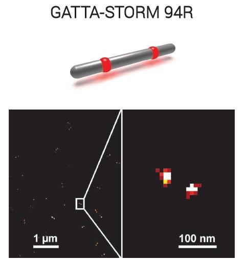 STORM纳米标尺