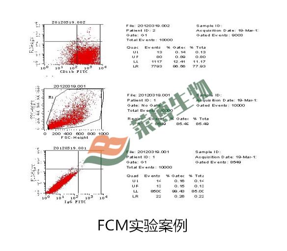 流式细胞检测   FCM