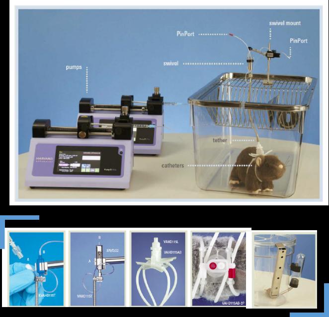 葡萄糖钳夹实验系统