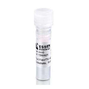 IncuCyte Caspase-3/7细胞凋亡绿色试剂