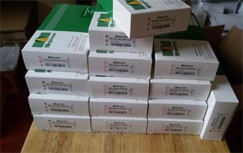 爱尔兰 检测试剂盒 Megazyme