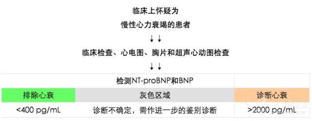 bnp3.png
