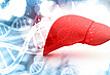 重视 HBsAg 突变隐患应对乙肝防治新挑战
