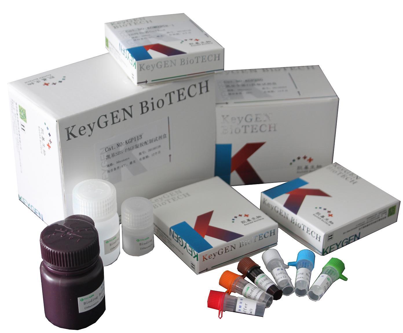 Annexin V-FITC/PI双染细胞凋亡检测试剂盒KGA106