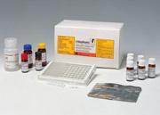beta兴奋剂检测试剂盒