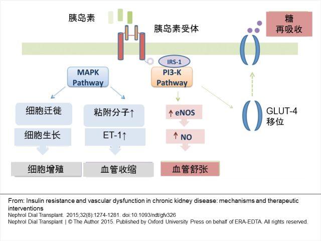 Figure (1).jpg