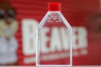 25cm2 Smart 细胞培养瓶