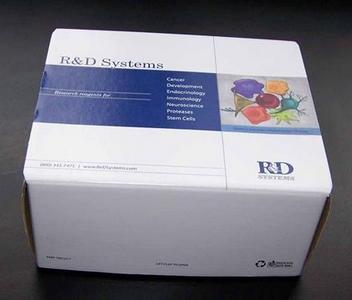 GP73试剂盒