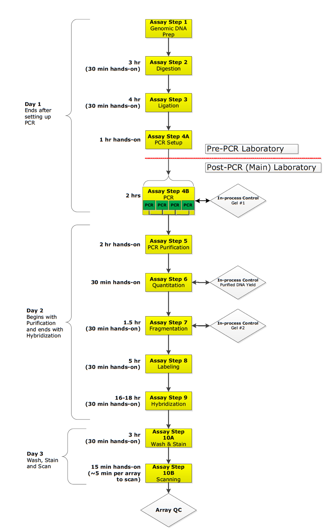 全基因组拷贝数变异检测服务