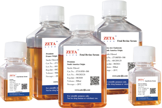 Fetal Bovine Serum France Origin(Z7186FBS-500)