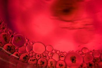 人源口腔鳞状细胞癌细胞系;TSCC1操作步骤