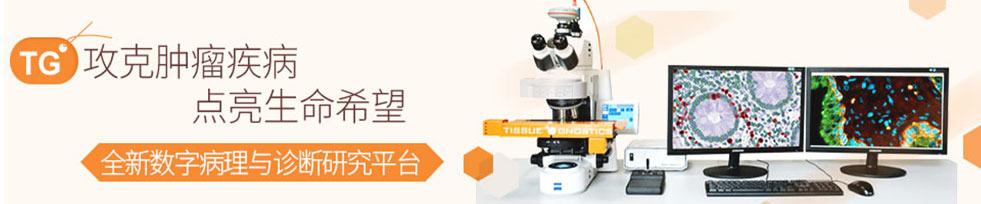 全景组织细胞定量分析系统--全新数字病理与诊断研究方案