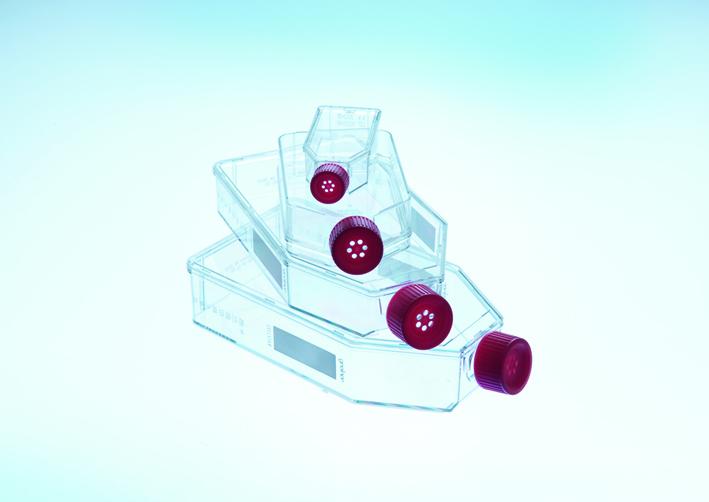 细胞培养瓶,25cm2,TC处理,红色滤盖,灭菌