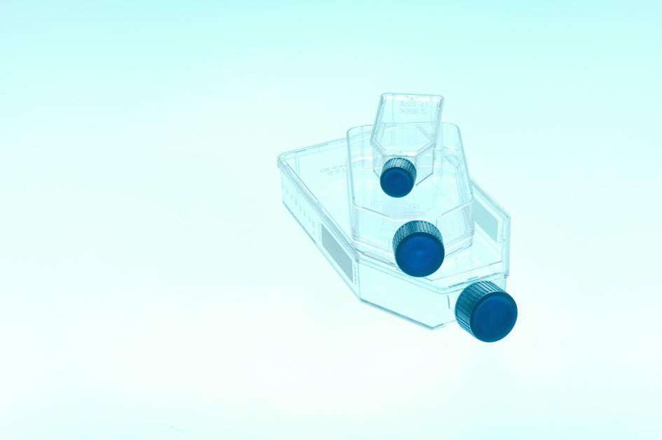 Advanced TC细胞培养瓶,25cm2,Advanced TC处理,蓝色标准盖