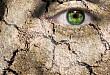 急性脊髓卒中致典型「蛇眼征」 1 例