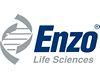 Phospholipase C-zeta-1 (PLC-zeta-1) antibody