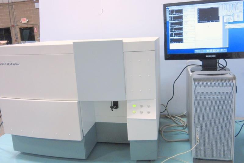 二手BD FACSCalibur流式细胞仪