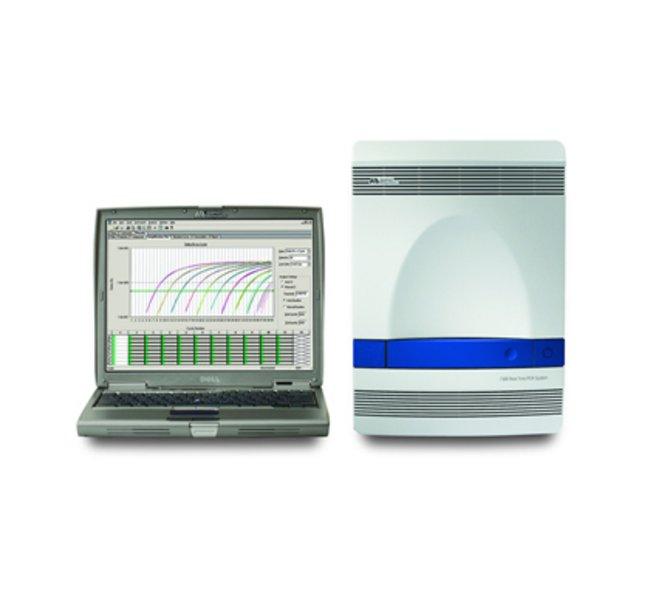 ABI7500定量PCR仪