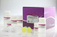 无内毒素质粒大提试剂盒(DP117)