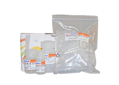 质谱兼容型蛋白银染试剂盒10 次说明书