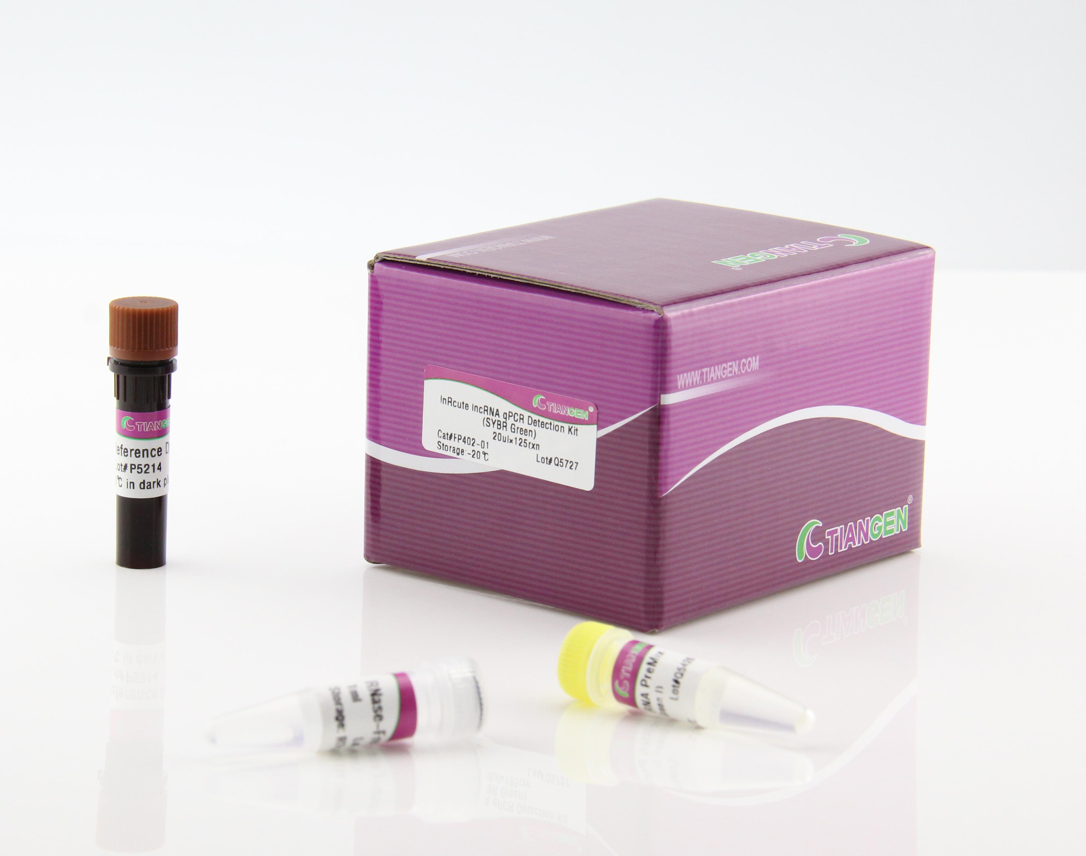 lnRcute lncRNA荧光定量检测试剂盒(SYBR Green) (FP402)