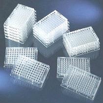 醋酸纤维素滤膜