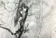 生死时速救少年——急诊介入抢救高危肺栓塞一例