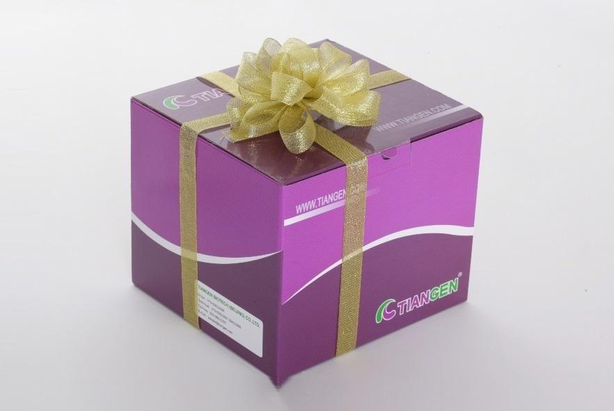 无内毒素质粒小提中量试剂盒(DP118)