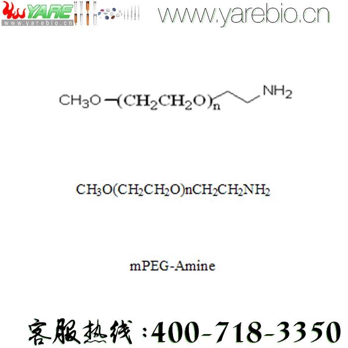 mPEG-NH2 mPEG-Amine 氨基聚乙二醇 PEG修饰剂 PEG衍生物 活化PEG