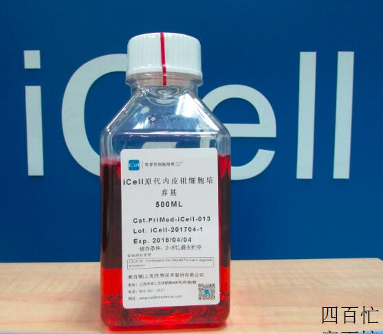 iCell原代内皮祖细胞培养体系