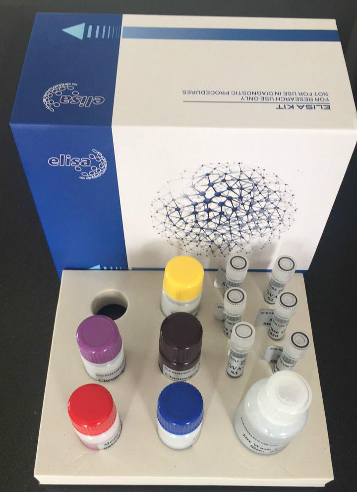 大鼠L选择素(L-Selectin/CD62L)ELISA试剂盒品牌