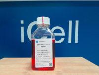 DMEM/F12   专利细胞培养基