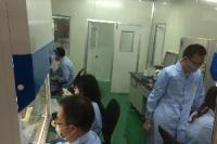 荧光定量PCR/RT-PCR实验技术对外服务