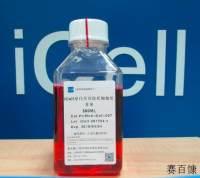 iCell原代星形胶质细胞培养体系