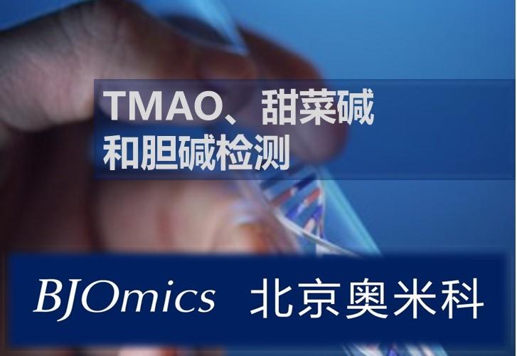 氧化三甲胺(TMAO)、甜菜碱 和胆碱检测