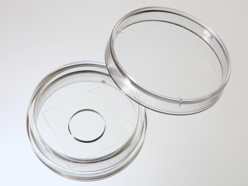 D29-10-1-N  29mm玻璃底细胞培养皿