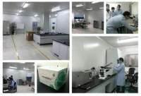 细胞鉴定/CCK8/MTT检测、细胞划痕实验、流式分选、Transwell迁移