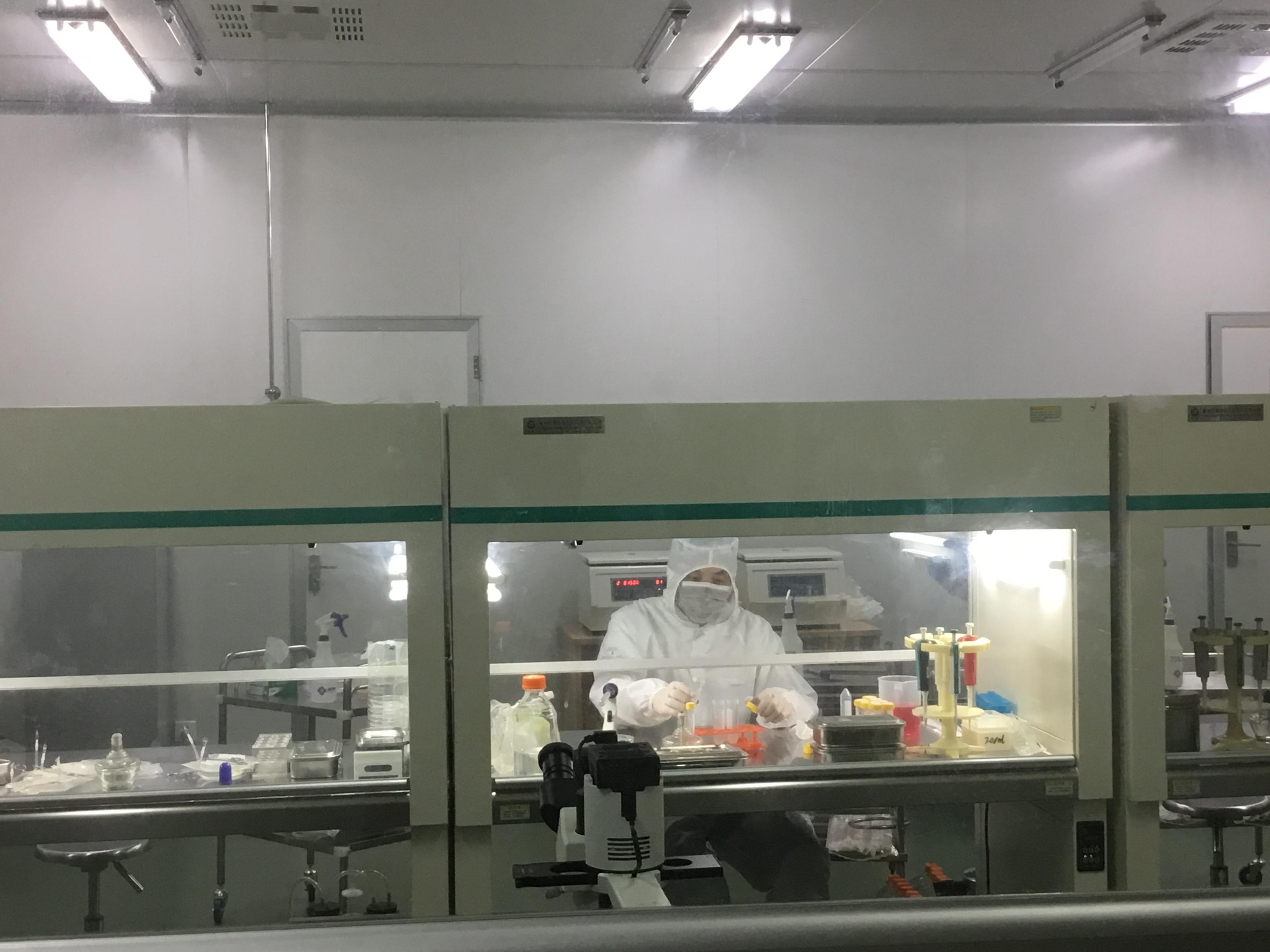 生物实验外包服务 分子生物相关实验 引物合成 免疫组化实验