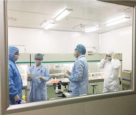 原代細胞培養/流式細胞周期檢測/MTT/CCK8/XTT/Transwell細胞遷移