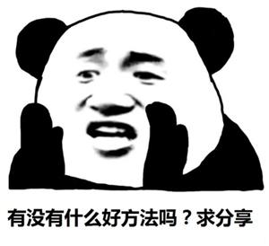 熊猫.jpeg