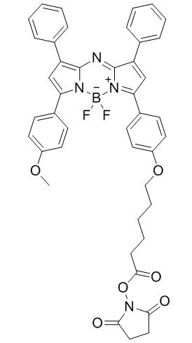 Azo-Bodipy活性荧光染料(水溶,脂溶)