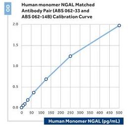 Anti-NGAL (human)
