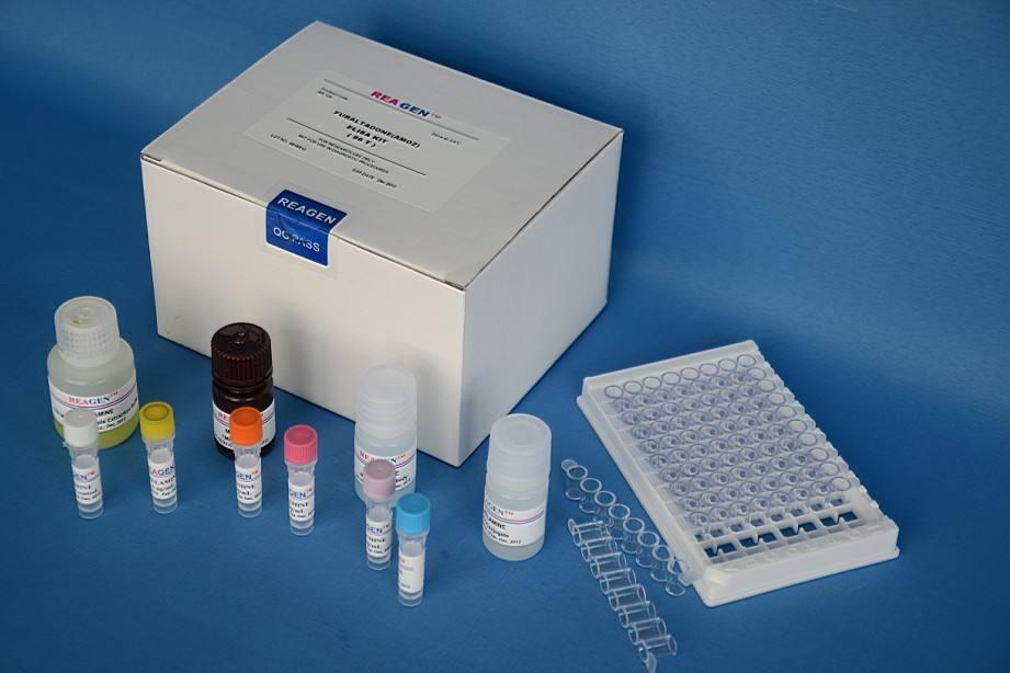 小鼠β淀粉样蛋白1-42(Aβ1-42)Elisa试剂盒