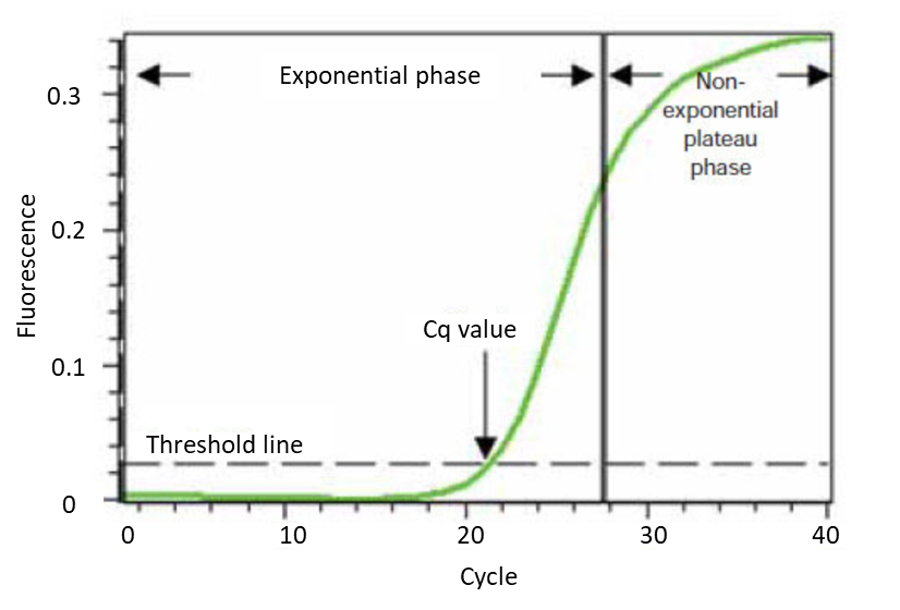 PCR/Q-PCR/RT-PCR实验