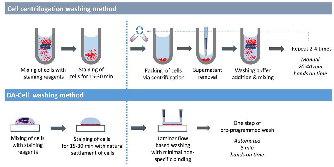 流式细胞分离再培养