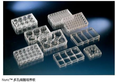 Nunc™ 140675多孔细胞培养板