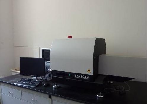 Micro-CT检测/小动物Micro-CT检测