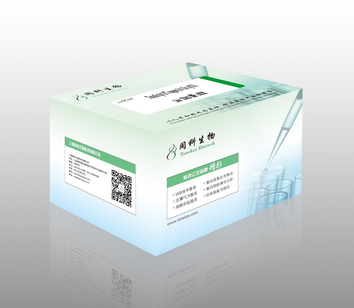 TonkBio RT reagent kit (for qPCR)