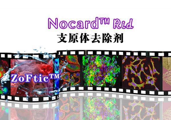 Nocard™ Rid(支原体去除剂)