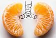 肺移植术后支气管曲霉菌病致吻合口瘘1例
